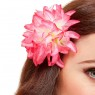 Hawaiian Flower Hair Clip at Fancy Dress and Party