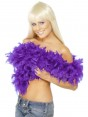 Purple Feather Boa at Fancy Dress and Party