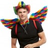 Rainbow Feather Wings Front View at Fancy Dress and Party