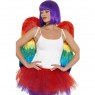 Rainbow Feather Wings at Fancy Dress and Party