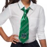Slytherin Tie at Fancy Dress and Party