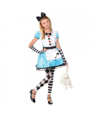 Alice Dress at Fancy Dress and Party