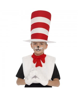 Cat in the Hat Kit at Fancy Dress and Party
