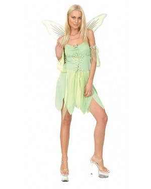 Fairy Costume and Wings at Fancy Dress and Party
