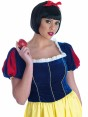 Long Snow White Costume Close Up at Fancy Dress and Party
