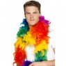 Rainbow Feather Boa Alternative View at Fancy Dress and Party