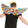 Rainbow Feather Wings Back View at Fancy Dress and Party
